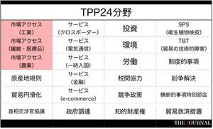 Tpp24